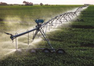 A Chester AG Systems irrigation system waters a corn field in Northwest Indiana