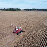 Corn is harvested in Jasper County